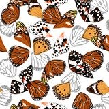 Multiple colors seamless pattern vectror of butterfly wing surface line hand drawing sketch dsign for fashion,fabric,web,wallpaper. And all prints on white royalty free illustration