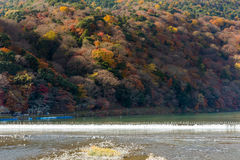 Multiple colours on the mountain in Arashiyama Stock Photos