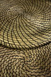 Multiple de Fibonacci contrastant les tapis en spirale formés d'herbe sèche Photos stock