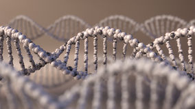 Multiple DNA molecules. Genetic disease, modern science or molecular diagnostics concepts. 3D rendering. Multiple DNA molecules. Genetic disease or molecular Royalty Free Stock Images