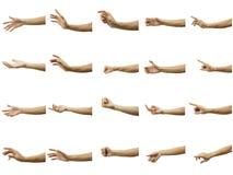 Multiple du geste de main de l'homme d'isolement sur le fond blanc Coupez soigneusement par l'outil de stylo et insérez un chemin image libre de droits