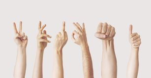 Multiple female hand gestures on gray background. Hands and hold stock photography
