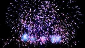 Multiple fireworks explosion stock video