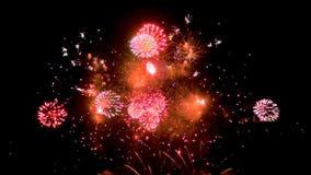 Multiple fireworks explosion stock footage