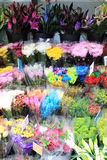 Multiple flowers at a market Stock Images