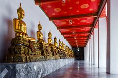 Multiple golden buddha statues in temple in Thailand royalty free stock photos