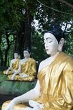 Multiple golden buddhas in the forest in bago myanmar stock photo