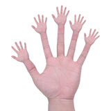 Multiple hands. Means a lot of hands helping all in one solution and one hand Stock Images