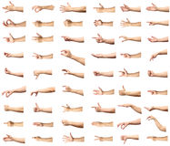 Multiple male caucasian hand gestures isolated over the white ba. Ckground, set of multiple images royalty free stock image