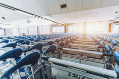 Multiple numbered luggage carts Royalty Free Stock Photo