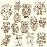 Multiple owl illustration. Fourteen variations of owl on simple background stock illustration