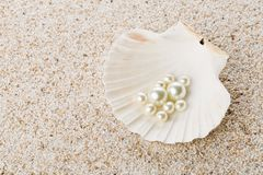 Multiple pearls in sea shell on sand Royalty Free Stock Images