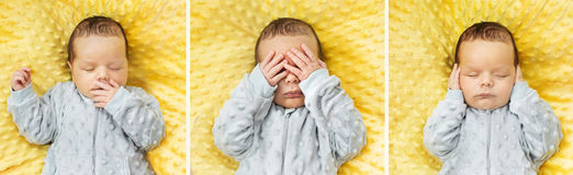 Multiple picture of a newborn child Royalty Free Stock Photos