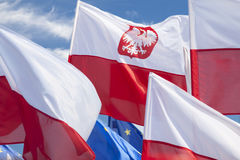 Multiple Polish Flags Flying Against the Sky Royalty Free Stock Images