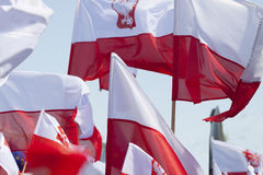 Multiple Polish Flags Flying against the Sky Stock Photos