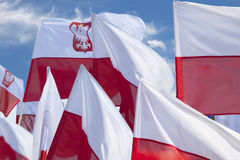 Multiple Polish Flags Flying Against the Sky Stock Photo