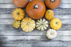 Multiple Pumpkins on wood floor Royalty Free Stock Photography