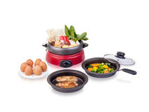 Multiple purpose electric pot kitchenware, an image isolated Stock Photo