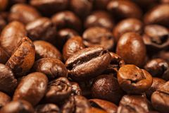Multiple Roasted brown coffee beans Stock Photo