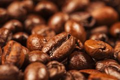 Multiple Roasted brown coffee beans Royalty Free Stock Images