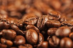 Multiple Roasted brown coffee beans Royalty Free Stock Image