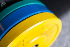 Colored heavy dumbbell weights in gym royalty free stock images