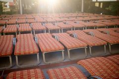Multiple rows of recliner chairs at a resort. Multiple rows of recliner chairs with red cushions at a tropical resort viewed low angle facing a bright sun with Stock Photography