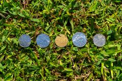 Rupiah coin money on green grass. Multiple Rupiah coin money on green grass in single line Stock Image