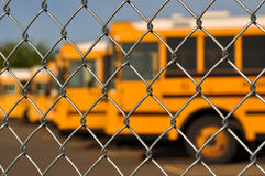 Multiple School Bus with Blue Sky Stock Photos