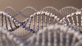 Multiple spinning DNA molecules. Genetic disease, modern science or molecular diagnostics concepts. 4K seamless loop