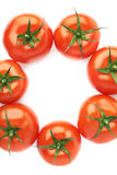 Multiple tomatoes aligned in a circle Stock Photos