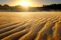 Sand dune with multiple undulated waves at sunset. Royalty Free Stock Photos