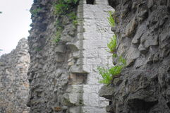 Multiple walls of knaresborough castle Royalty Free Stock Image