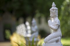 Multiple White buddhist statue with clapsed hand in green garden background. Multiple White buddhist statue with clapsed hand in green garden  bokeh background Stock Image