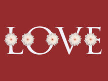 Multiple white daisy flower love letter design valentines day card background Royalty Free Stock Photos
