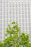 Multiple windows on a large office building London England Europ Stock Image