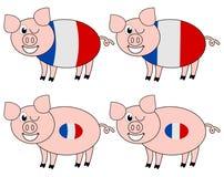 Multiplication française de porc heureuse Images stock