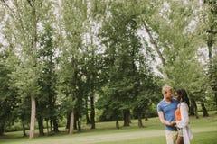 Multiraciaal paar in het park stock foto