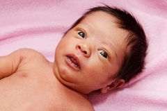 Multiracial Baby Girl Royalty Free Stock Images
