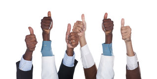 Multiracial  business hands Stock Photography