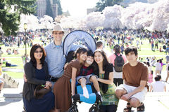 Multiracial family in crowd with disabled child in wheelchair. Large multiracial family in crowd with disabled child in wheelchair. Flowering cherry trees in Royalty Free Stock Photos