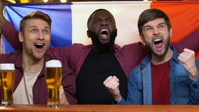 Multiracial fans waving French flag in bar, rejoicing national team victory. Stock footage stock footage