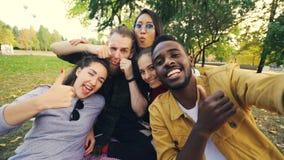 Multiracial grupa przyjaciele bierze selfie w parkowym obsiadaniu na koc, pozuje kamerę i patrzeje, Amerykanin afrykańskiego poch zdjęcie wideo