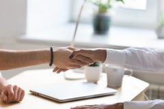 Multiracial handshaking бизнесмена и коммерсантки на встрече Стоковая Фотография RF