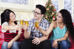 Multiracial people making a champagne toast Royalty Free Stock Images