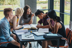 Multiracial students studying together in a library. Young people sitting at table working on school assignment. Multiracial group of students studying together Stock Photos