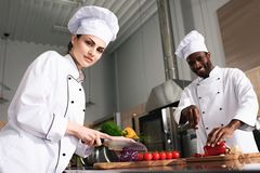 Multiracial team of cooks cutting vegetables royalty free stock photography