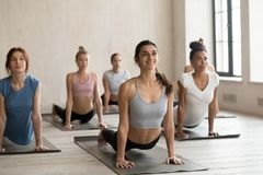 Multiracial toned women practice yoga stretching together. Multiracial toned young women wear sportswear practice yoga on mats in fitness studio together royalty free stock image