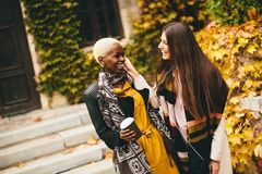 multiracial vänner Royaltyfria Foton
