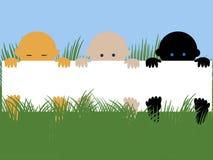 Multiraciale babys met banner Stock Fotografie